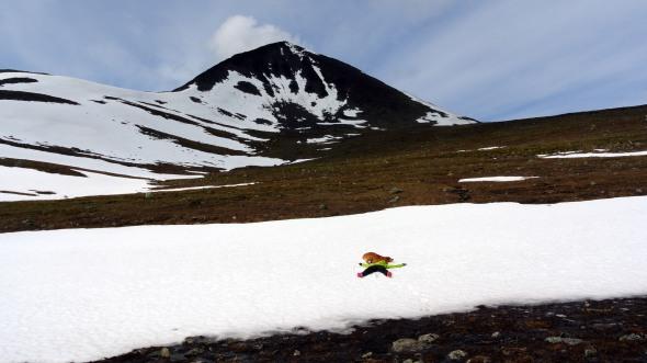 Kesälomalainen iloitsee kun näkee pitkästä aikaa viimein lunta! Matkalla kohti huippua.