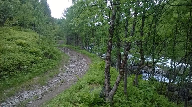 Alkumatkasta ura kulki koskien rytmittämää Paras-joen vartta.