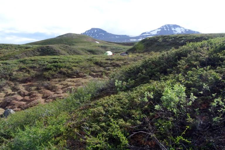 Hiekkaharjanteen molemmin puolin on puroja ja lampia, joiden rannoilta löytyy hyviä telttapaikkoja. Emme innostuneet viemään telttaa Pältsan tuvan pihapiiriin, vaan jäimme omaan rauhaan.