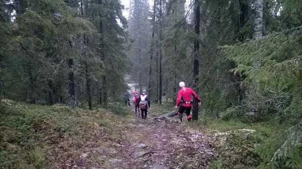 Polku Korkalovaaran ja Sinettäjärven välillä on hyvin juostavaa. Vaikka mistään unohtumattomista maisemista ei ole kyse, on reitti oikein kiva.