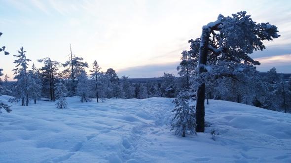Rovaniemen polkujuoksuoslosuhteet ovat kelien armoilla: kun paljon sataa lunta, on lenkkeily kahlaamista. Kovien pakkasten myötä polut kovettuvat mukaviksi.