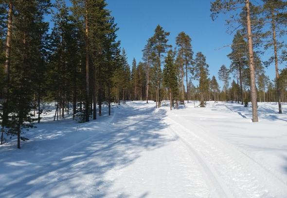 Keli oli kuvankaltainen, aurinkopaisto ja parhaimmillaan ura oli liukas ja hyvä hiihtää.