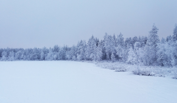 Kaunista on, sinistä ja pinkkiä, kelit houkuttelevat polkujuoksemaan, kun vielä voi juosta lähes missä vaan. Kohta siihenkin on liikaa lunta.